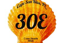 30E / 30E is the name of the state road stretching through Cape San Blas. 30E underscores the beauty of Cape San Blas.