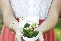 Favors and Place Cards - Wedding