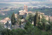 Scrofiano / Antico borgo medievale in Toscana dove abbiamo la sede legale e gestiamo l'incantevole parco dell'Uccelliera