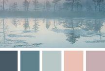 Culori pt camera