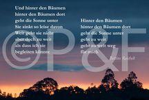 Unsere Postkarten / Hier das Postkartenprogramm -- auch das erfährt ständig Zuwachs!  Bestellungen über kontakt@poesieundfotografie.de