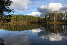 Finnish Landscapes / Landscape pictures from Finland (Photos: Mauri Kuorilehto)