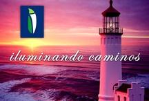 Logotipos y emblemas / Logotipos y emblemas que identifican a nuestro Grupo Consultor. El imagotipo del logo principal, representa el capullo de la flor del ceibo -la flor nacional de Uruguay- lo que nos muestra como un Staff de profesionales uruguayos, muy identificados con nuestro país y la identidad nacional.