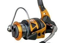 Fishing / I love to fish so I will find you the best gear available on the market.