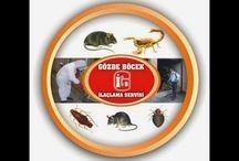 böcek ilaçlama  0535 640 54 56  02126539722