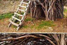 [Treehouse's :D] / We all love a good treehouse! Never grow up!
