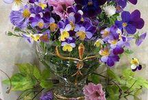 Virágom...virágom / Aki a virágot szereti, rossz ember nem lehet