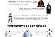 Karate / Lo mejor de este arte marcial.