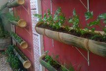 uma horta no meu cantinho:::