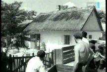 Scenes from Hungarian movies & TV-series... / Scenes from Hungarian movies & tv-series... / jelenetek, fotok magyar mozi- és TV-filmekből, sorozatokból...