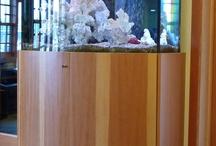 Aquarium Enclosures / by Parrish Built
