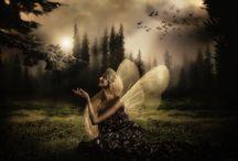fairies / by Samantha Varela