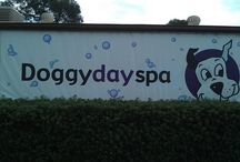 Doggy Day Spa - Grooming / We offer grooming appointments at Newcomb, Ocean Grove and Drysdale. Call 52482009 to make a booking.