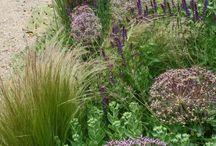 Amazing planting schemes