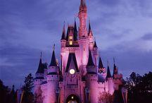 NASP 2015 Annual Convention - Lake Buena Vista, FL / The scoop on attractions located in Lake Buena Vista, FL.
