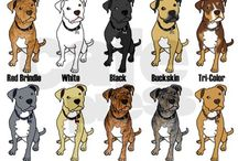 Animals Dogs Puppies Pets +