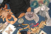 Early Years Artefacts / Our favourite books and artefacts for Early Years topics and displays. The artefacts are sent to be shown and used under supervision so sometimes we might include fragile or heavy  items for shared investigation.