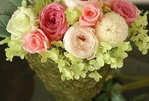 【お見舞いのお花】プリザーブドフラワー / Flower noteのプリザーブドフラワー お見舞いのご用途で製作したアレンジギャラリーです。