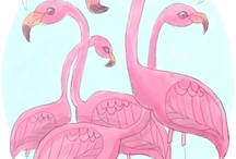 Flamingos / by Whitney Lawson