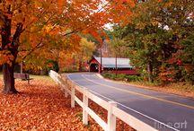 Brattleboro Vermont / by Pam