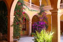 ARCHITECTURE / COURTYARDS