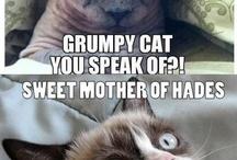 Grumpy Cat Memez