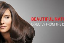 Authentic Human Hair Extensions / Buy Human Hair Extensions online at wholesale with Black Gold Impex. Human Hair Exporters in India.