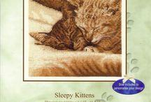 Cats/Kettir