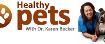 Health News for Pets