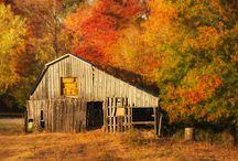 Vintage Barn/Etc. Images / by Janet Mackley