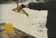 Michigan Fishing at The Wilderness Reserve / Fishing is one of the favorite past times in Michigan and Wisconsin, and The Wilderness Reserve has great fishing opportunities, no matter the season. No license required, and the fish are biting!