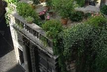 Terrazza Con Giardino