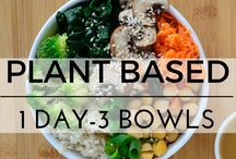 Plant based recipes
