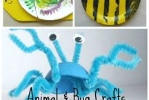 insects and spiders activities