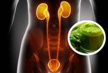 Healthy sport/Diet