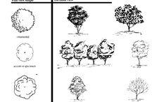 Trädgård elevation symbols