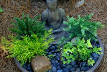 Yen for Zen / Outside zen garden