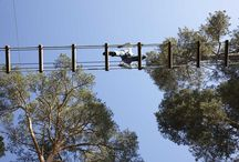 rope course activities / Some of the activities that we propose on our website: koala-equipment.com
