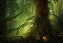 Enchanted: Places & Spaces / Where fairies live... / by Daisy Johnsen