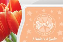 Scentsy Bars Spring And Summer Scents / Scentsy Spring and Summer Scents offer a mix of sweet summer fruits and spring scents that fill the air. The spring and summer fragrances are like slipping into your best-loved white T-shirt after a long, cold winter of turtlenecks. Breathe, and smile.
