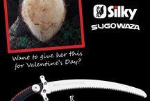 Silky special