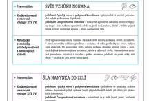 Evaluace v MŠ / evaluační archy a zdroje pro zpštnou vazbu na výchovně-vzdělávací proces v mateřské škole