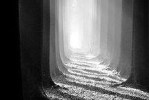 Fotografie [Black&White]