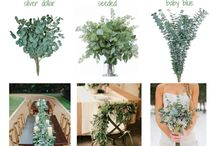 Wedding bouquet ideas/ flowers