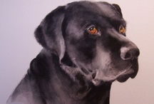 My Paintings / Paintings of my travels, paintings of pets, watercolor, acrylic, sketching... I love it all. I love to paint!