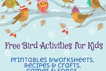 Library - Storytime - Birds