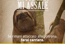 Sopravvivi all'inverno / Stanca dell'inverno? Segui le avventure di Tosca! https://www.facebook.com/activia.italia/app_191478724390351 / by Activia Italia