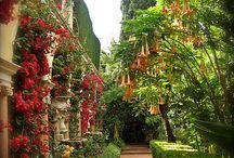 Inspiration: Garden ideas