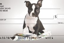 Boston Terrier Stuff / Pics and gifts for boston terrier owners. Get Boston Terrier personal checks and address labels at bostonterrierchecks.com