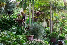 Green acres garden ideas